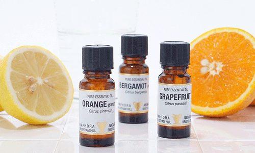 柑橘系の香りが大好き!でもどのアロマを選べばいいの?